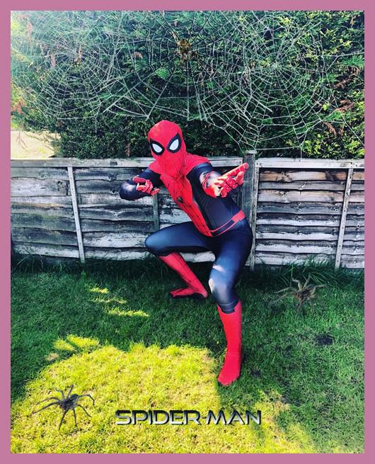 Super Hero Spidey